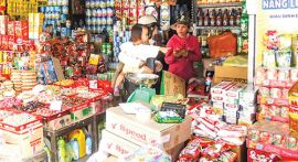 Mekong Delta sees slow progress in upgrade of trading households into companies
